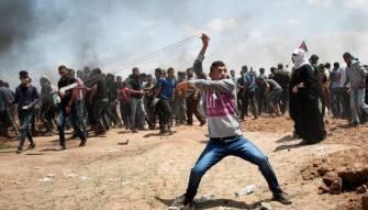 14 أيار  يوم فلسطين...